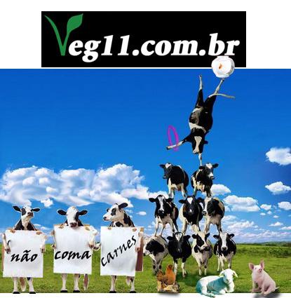 Acesse www.veg11.com.br